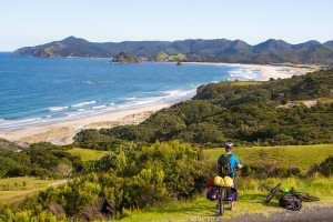 Palmers Beach - Great Barrier Island