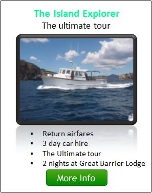 The  Island Explorer Package - Great Barrier Island