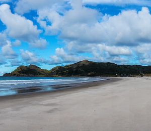 Twin Pines - Go Great Barrier Island