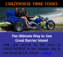 crazy-horse-ad