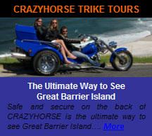 crazy-horse-ad