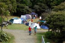 camp2.small