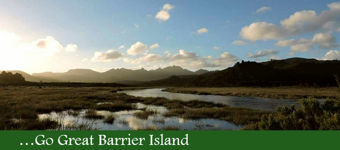 j Go Great Barrier Island