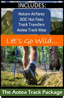 Click here for the Aotea Track hiking package